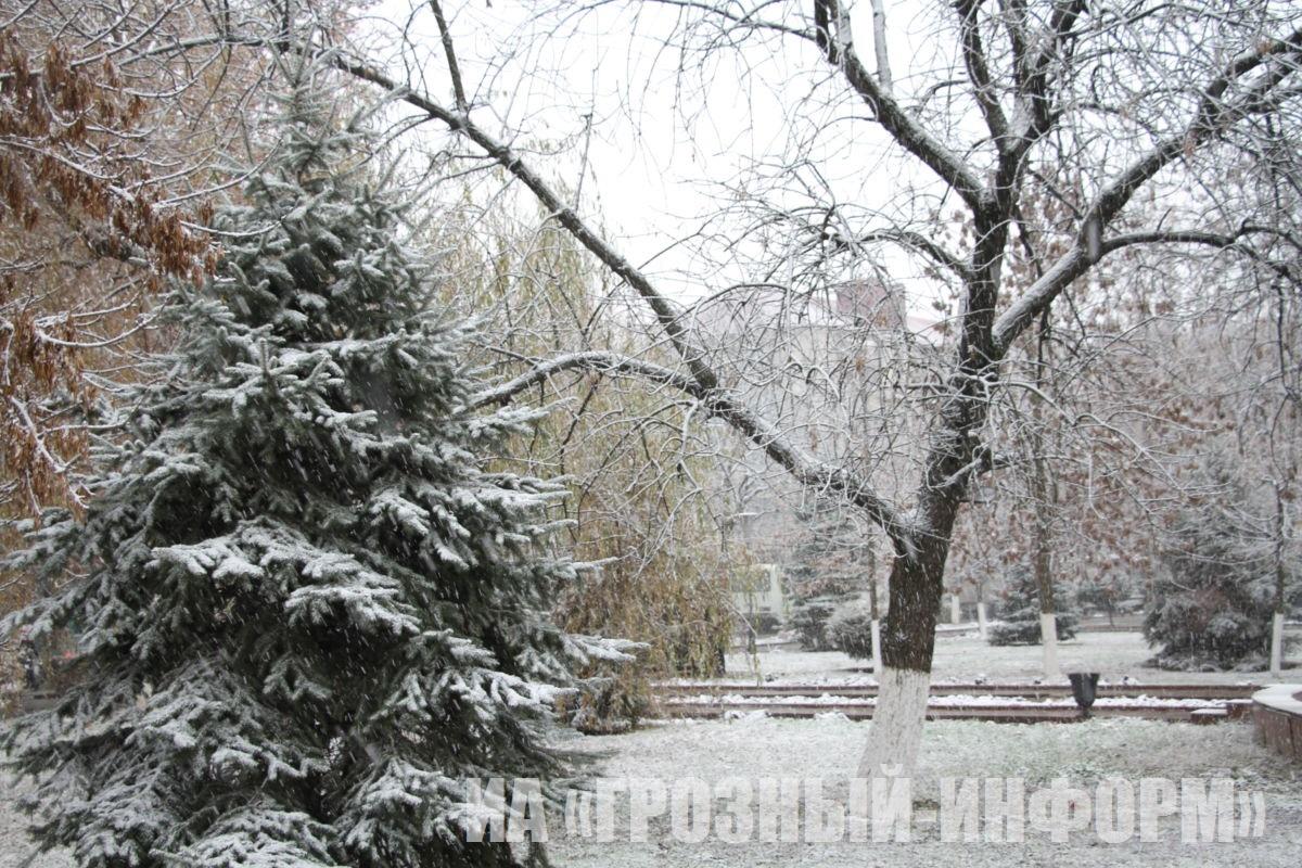 В Грозном выпал первый снег