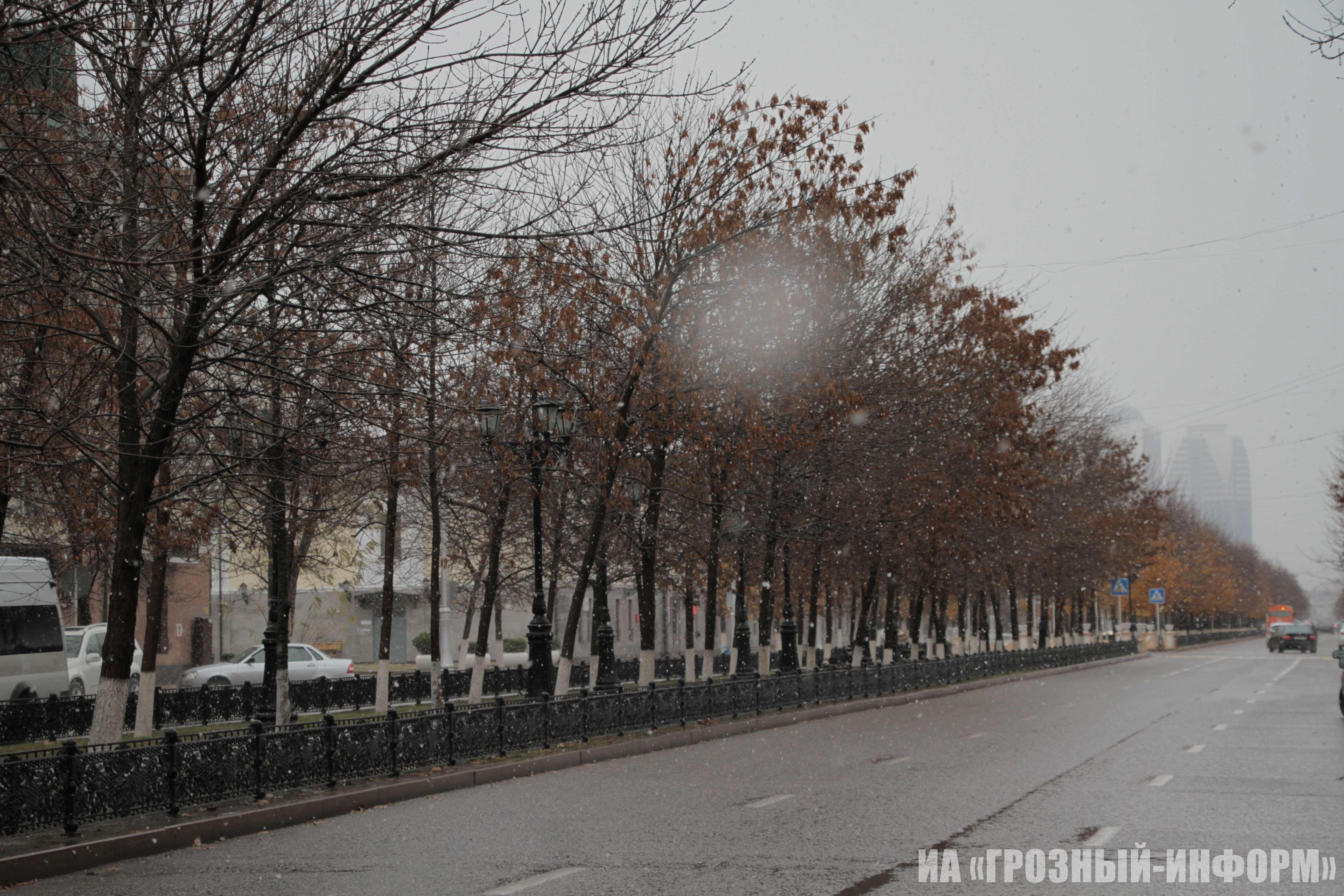 Утренний снег в Грозном