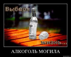 фото приколы алкоголизм-17