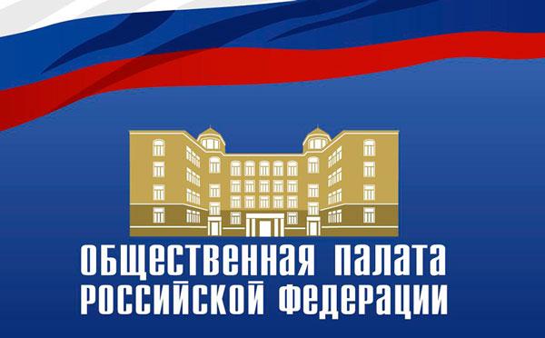 В ОП РФ обсудили реализацию программы «Плавание для всех»