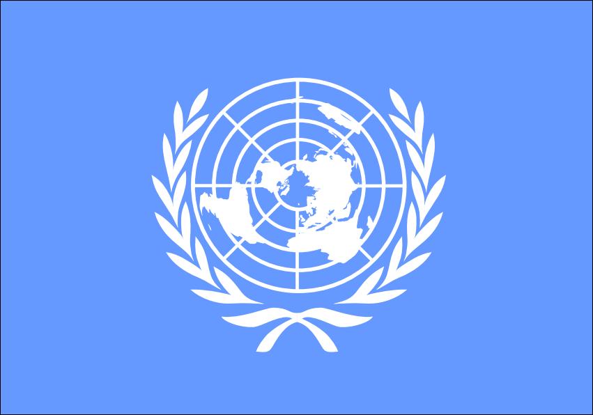 ООН обвинила вооруженную оппозицию вСирии вубийстве десятков граждан Алеппо