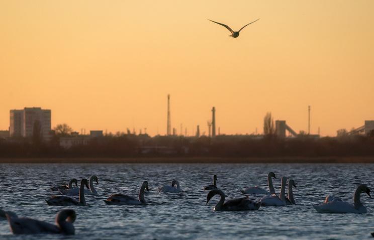 Ельченко предложил РФ решение проблемы водоснабжения вКрыму