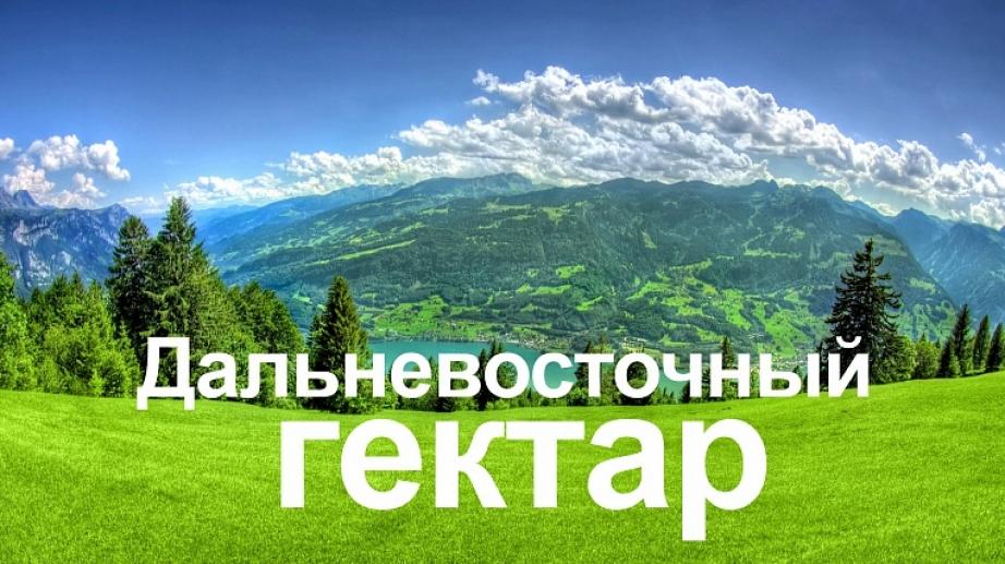 ВХабаровском крае реализуется программа «дальневосточный гектар»