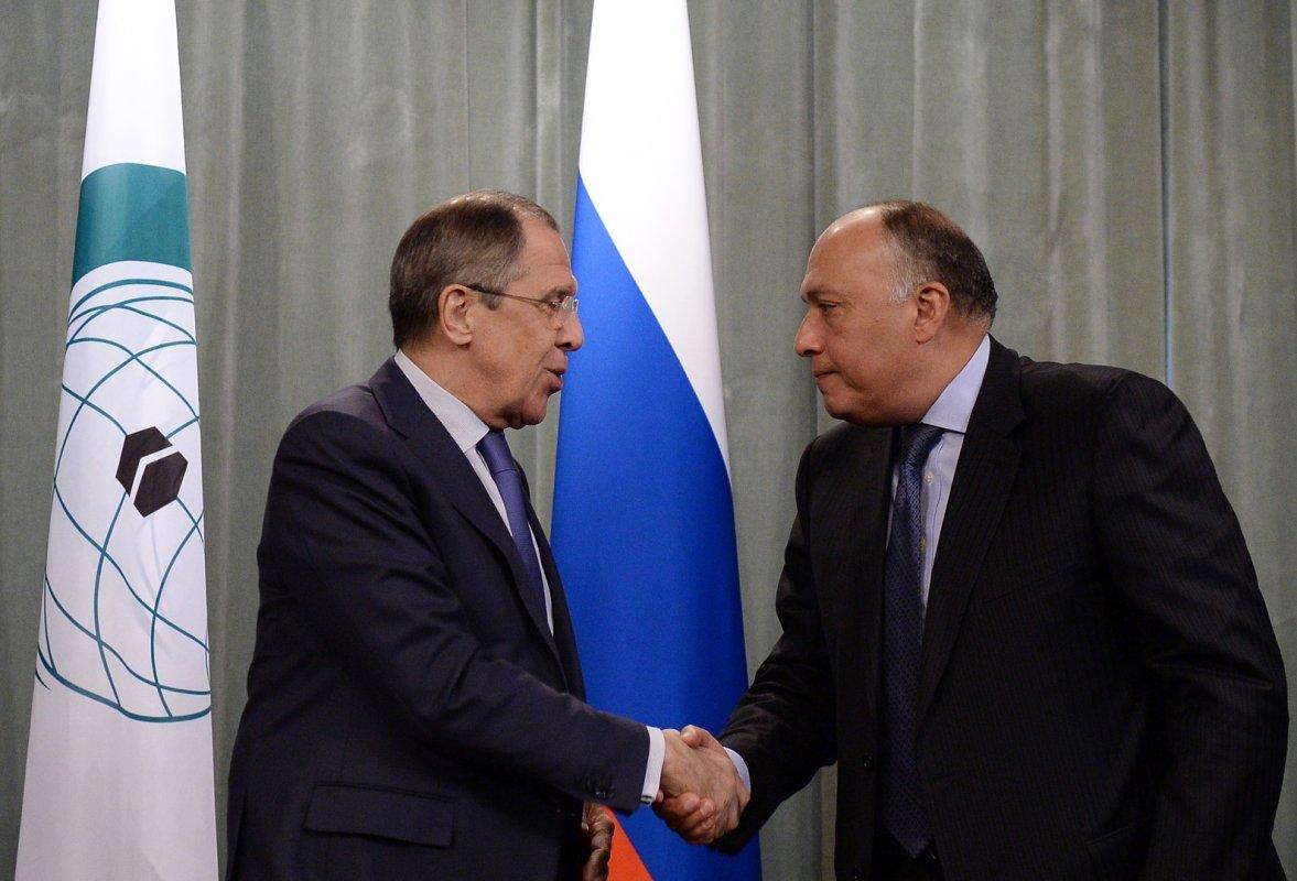 Руководитель МИД Египта сообщил Лаврову письмо президента страны для Владимира Путина