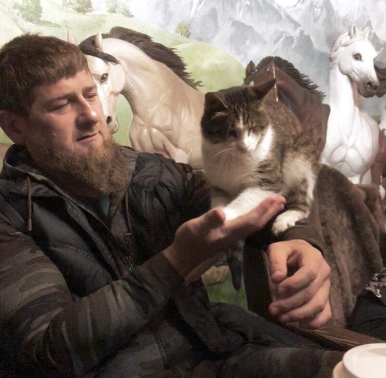 Кадыров— обубийстве котёнка: Удевушек-живодёров нет материнского инстинкта
